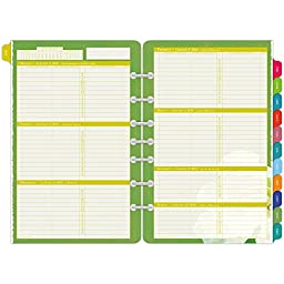 Day-Timer Weekly Planner Refill 2016, 12 Months, Loose-Leaf, Desk Size, 5.5 x 8.5 Inches, Flavia (09633)
