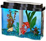 AQUARIUS AQ22502 BettaWave 2.5-Gallon Tank with Divider