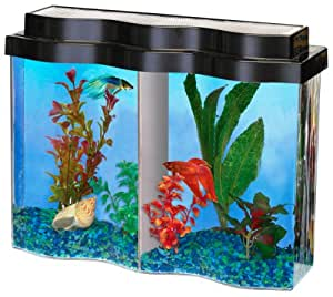 Aquarius aq22502 bettawave 2 5 gallon tank for Fish tank divider 55 gallon