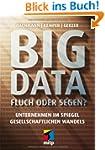 Big Data - Fluch oder Segen?: Unterne...