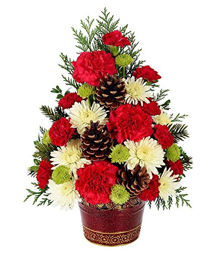 Holiday Flowers Christmas Tree Celebration 5ive Dollar
