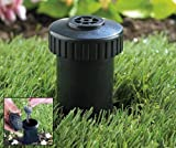 Discrete Sprinkler Head Key Hide Hider