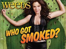 Weeds Season 8