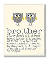 The Kids Room by Stupell Definition of Brother with Two Grey Owls Rectangle Wall Plaque