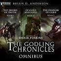 The Godling Chronicles Omnibus: Books 1-3 Audiobook by Brian D. Anderson Narrated by Derek Perkins