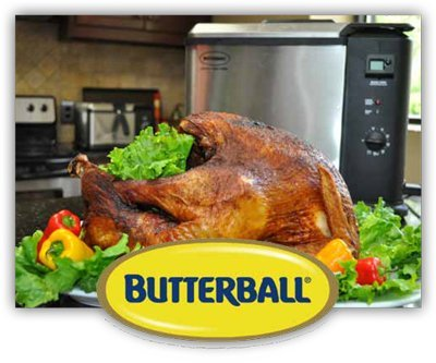 """Butterball Digital Electric Extra Large (XL) Turkey Fryer Stainless Steel 15.7""""L x 14.6""""W x 14.2""""H"""