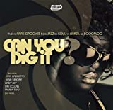 echange, troc Various Artists - Can You Dig It
