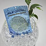 'Aqua Crystal' Expanding Water Storing Gel Bead Crystals - CLEAR - 20g bag