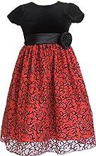 Alexandra Little Girls39 Party Dress Size 2 to 8