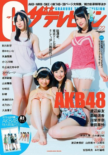 G(グラビア)ザテレビジョン Vol.2262484‐31 (ムック)