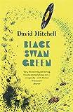 BLACK SWAN GREEN (0340822805) by DAVID MITCHELL