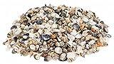 NaDeco® Muschelmix small 1kg