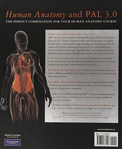 Human Anatomy 7th Edition By Martini Powerpoint Slides