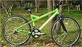 超特価!!FR-600(ライト付き)低床型スポーツバイク 18段 420mm gr