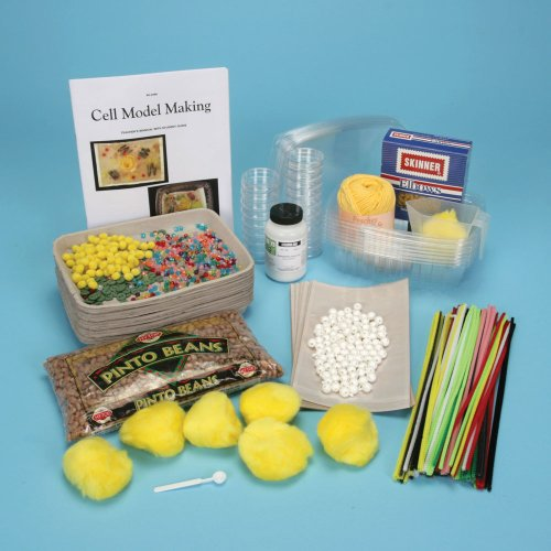 Cell Model-Making Kit (Plant Cell Model compare prices)