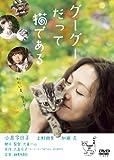 �����������ä�ǭ�Ǥ��� �˥����ե롦�ǥ������դ� [DVD]