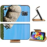 Luxlady Premium Samsung Galaxy S5 Flip Pu Leather Wallet Case IMAGE ID 8015006 Sheep kneeling on a dyke