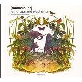 Raindrops and Elephants-Piranha Re:Interpretations [Vinyl LP]