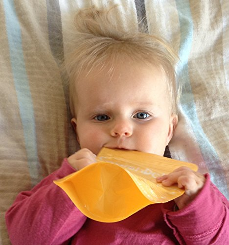 Squish Delish Full Box : Squish Delish Large 6.7 oz Reusable Baby Food Pouches ~ FIVE Pouch Pack with Free Recipe E-book ...