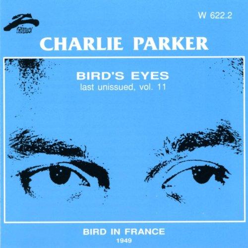 birds-eyes-vol-11-bird-in-france
