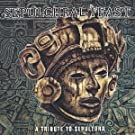 Tribute To Sepultura