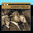 An Introduction To Junior Wells