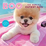 Boo The Worlds Cutest Dog 2015 Calendar