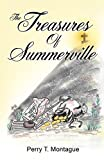 img - for The Treasures of Summerville book / textbook / text book