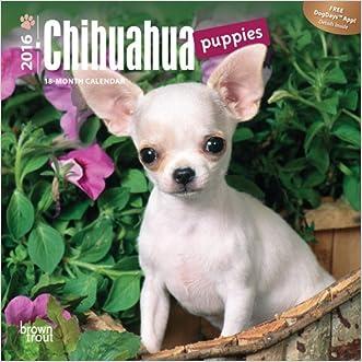 Chihuahua Puppies 2016 Mini 7x7 (Multilingual Edition)