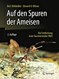 Image de Auf den Spuren der Ameisen: Die Entdeckung einer faszinierenden Welt