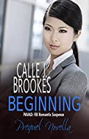 Beginning: A PAVAD Prequel Novella (PAVAD: FBI Romantic Suspense Book 1) (English Edition)