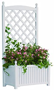 DMC Products Lexington 28-Inch Rectangle Solid Wood Trellis Planter Hunter Green