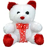 Valentine Gift : White And Red Teddy