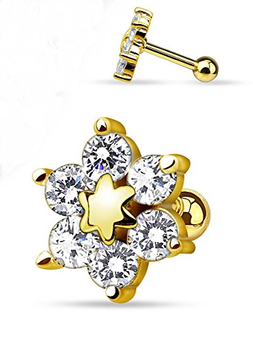 elegant-gold-plated-six-cz-flower-freedom-fashion-316l-surgical-steel-cartilage-tragus-barbell-gold-