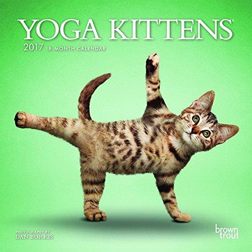 Yoga Kittens 2017 Calendar