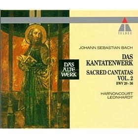 Cantata No.35 Geist und Seele wird verwirret BWV35 : V Sinfonia
