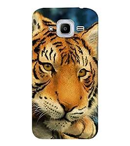 EPICCASE staring tiger Mobile Back Case Cover For Samsung J2 2016 (Designer Case)