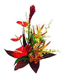 Bright Red Tropical - Hawaiian Flowers
