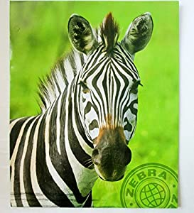 Zebra Themed Back to School Bundle - 3 Items: One Zebra 2 Pocket Portfolio, One Zebra Spiral Bound Notebook and One Black and White Striped Composition Book