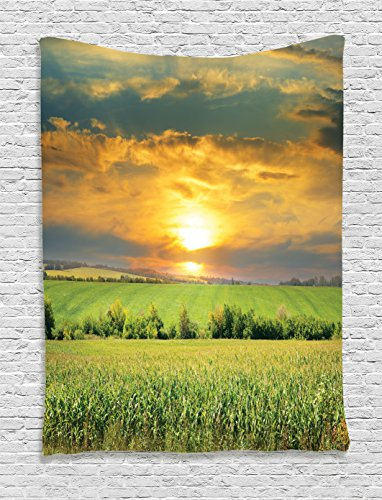 Ambesonne Farm House Decor Collection, Corn Field and Sunrise on Summer Sky Natural Paradise Pasture Mourning View Picture, Bedroom Living Room Dorm Wall Hanging Tapestry, Yellow Green (Corn Brothers Collection compare prices)