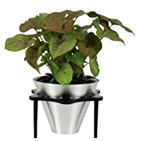 Oso Polar Indoor & Tabletop Planter Kit - Cone Style - Aluminum