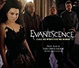 Evanescence Call me when you're sober