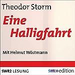Eine Halligfahrt   Theodor Storm