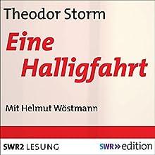 Eine Halligfahrt Hörbuch von Theodor Storm Gesprochen von: Helmut Wöstmann
