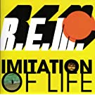 Imitation Of Life (U.S. Maxi Single 42363)