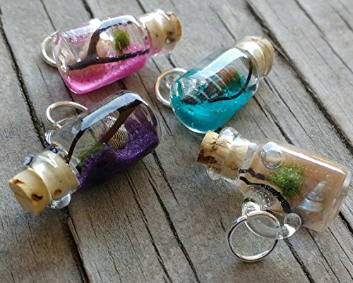 Marimo Moss Ball Living Pendant - Beach in a Bottle Necklace - Live Plant Jewelry (Ball Jar Pendant compare prices)