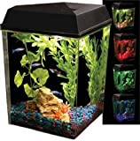 Aquarius Aq25000 Aquarius 2-1/2 Corner Tank 2-1/2-Gallon Aquarium Kit