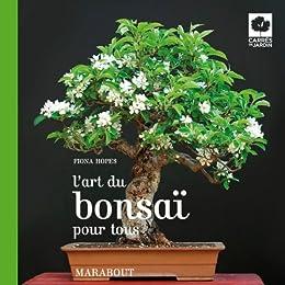 L' art du bonsaï pour tous