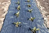 4 Ft. X 200 Ft. Black Biodegradable Planters Paper Mulch By Grower's Solution
