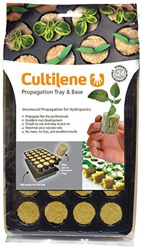 cultilene-gefullte-saatschalen-mit-24-zellen-fur-die-aufzucht-von-saatgut-oder-stecklingen-transpare